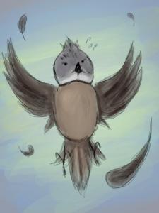 Ptak3